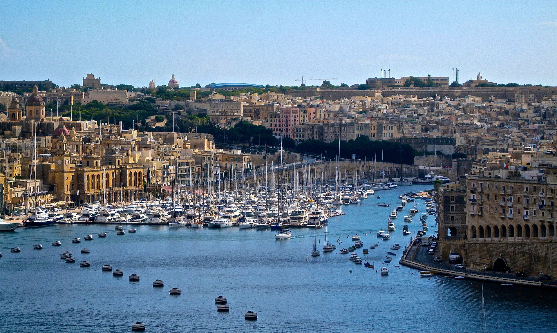 """Building a """"Healthy"""" Blockchain in Malta: Feature Interview With Denise De Gaetano, Data Science Expert"""
