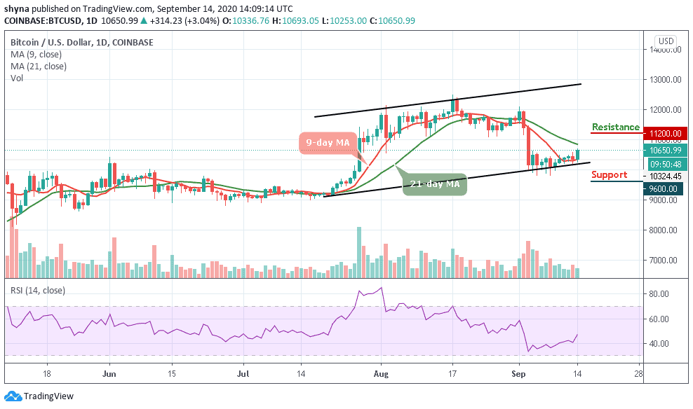Bitcoin Price Prediction: BTC/USD On The Road To Recovery, Price Jumps Back Above $10,500