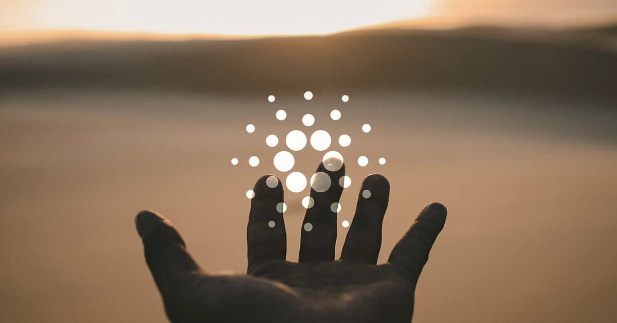 The future of the Cardano Foundation is in the hands of the community