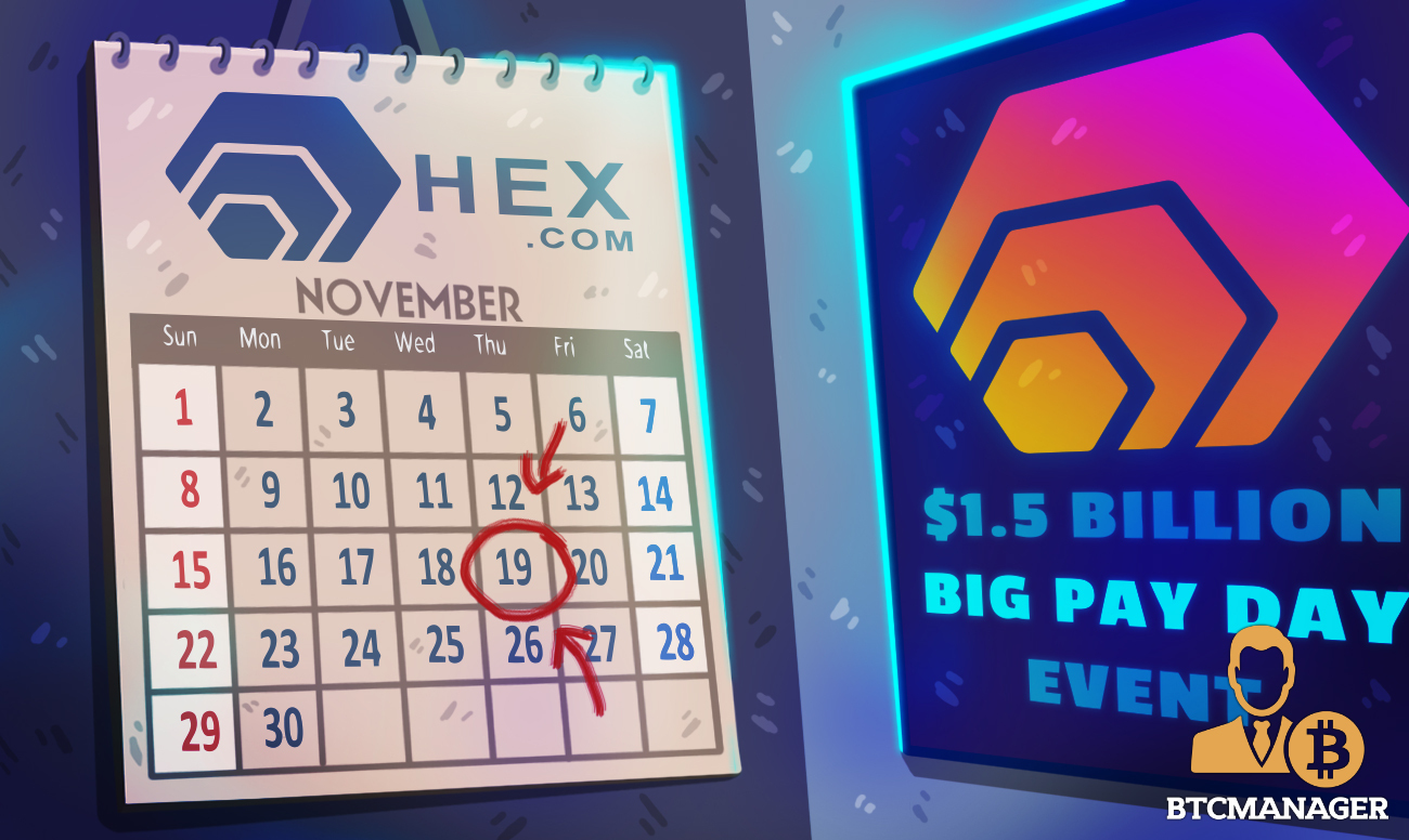 Outperforming Every Asset in 2020, HEX Announces $1