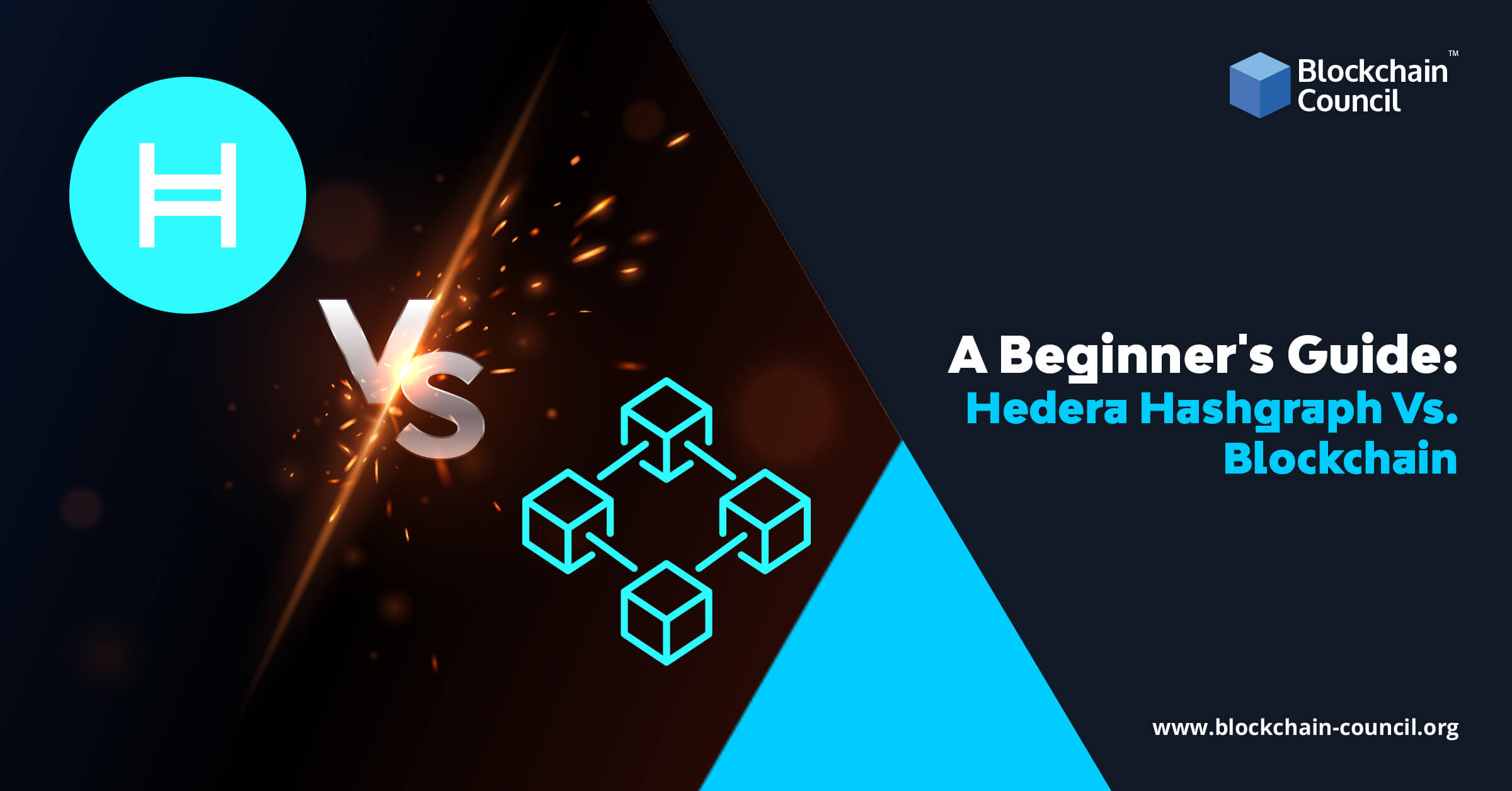 A Beginner's Guide: Hedera Hashgraph Vs