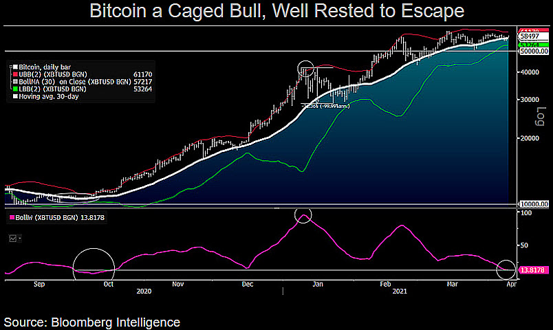 Bitcoin is 'caged bull' ready to escape at $60K — Bloomberg Intelligence