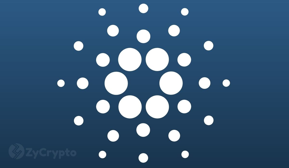 Charles Hoskinson To Critics: There Are Already Thousands Of Assets Running On Cardano
